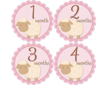 Monthly Baby Stickers, Girls First Year Photo Props, Baby Month Stickers, Baby Announcement, Monthly Photos, Baby Gift, Lambs (G101)