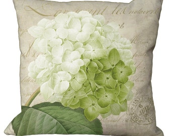 Romantic Green Hydrangea on French Document  in Choice of 14x14 16x16 18x18 20x20 22x22 24x24 26x26 18x12 20x13 24x16 inch Pillow Cover