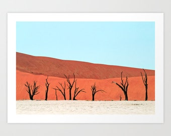 Trees Desert Photography Print