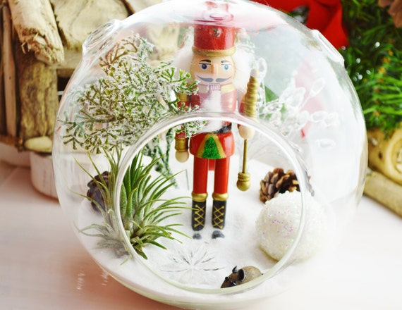 The Nutcracker Terrarium with Snow White Sand ~  Airplant -  Glass Round Globe ~ Magical ~ Gift ~ Ages 3 - 103