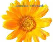 Calendula Ointment - 4 oz.