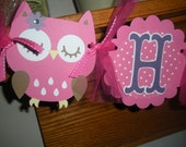 Owl Happy Birthday Banner Hot Pink and Purples Photo Prop Matching Tissue Pom Poms Available