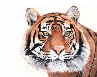 Tiger Watercolor Painting- animal art- print of watercolor painting - 5 by 7 size  print