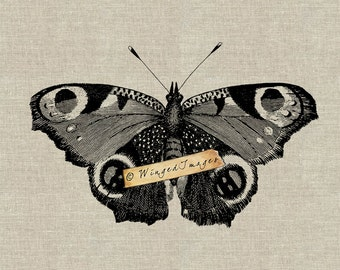 Large Beautiful Butterfly Instant Download Digital Image No.267 Iron-On Transfer to Fabric (burlap, linen) Paper Prints (cards, tags)