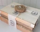 Decorative Book Bundle- Shabby Chic Vintage Book Stack Collection- Fleur De Lis Ribbon and Burlap Rosette