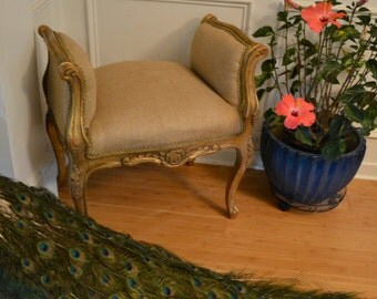 Stunning Miniature Bench. Single Person Accent Bench. Antique Rococo Gilded Wood. Accent Piece