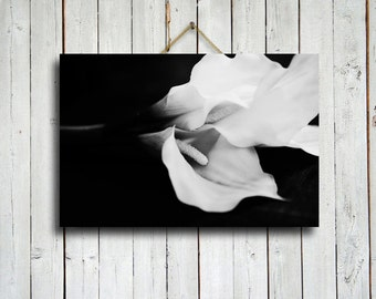 "Black and White Calla Lillies - Calla Lillies art - Calla Lillies canvas - Calla Lillies decor - 16x24"" canvas"