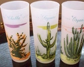 Mid Century Barware Serving Arizona  Blakely Frosted Glasses With Holder Saguaro Cactus Organ PIpe Ocotillo Cholla Set of 6