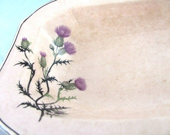 Antique Taylor Smith Taylor Unique Vegetable Dish Pink with Purple Thistle flowers Victorian Rare Design 1800s Collectables