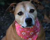 Sale Orange and Pink Flowers Dog Bandana