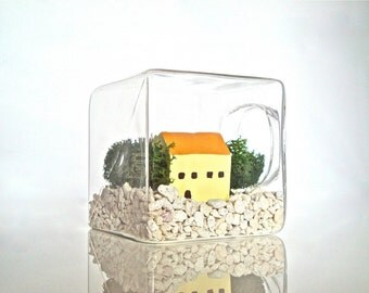 Mini Home Glass Cube Terrarium, Care Free Glass House Terrarium, Mini Home Decor, DIY Terrarium Kit, DIY Garden, Miniature Home Decoration