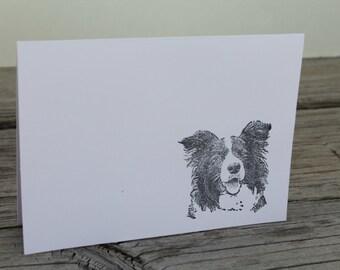 Set Of 10 Border Collie Cards