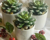 Reserved for Mary Only    Christmas Faux Succulent Party Favor Holiday  Succulent Winter Floral Holiday Party Favor Glitter Succulent