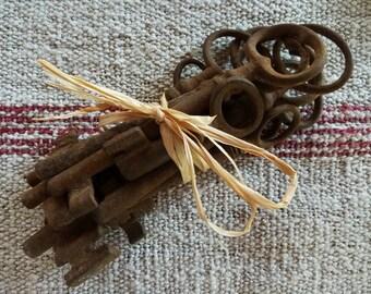 French antique keys, set of TEN old and rusty skeleton keys...Gift idea...Man Cave...Bargain price...Wedding decor....Christmas gift.