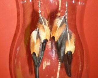 Simple, Elegant, Black and Tan Feather Earrings.