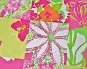 Lilly Pulitzer signature fabric Mini Fly By Patch cotton poplin  18 X 18 inches