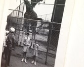 Vintage Snapshot of Sisters with Giraffe at the Zoo Black and White from 1950s