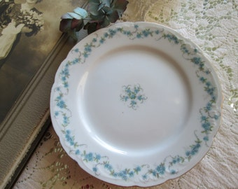 Set of vintage cottage  Blue and white antique austrian porcelain floral shabby chic  4 bread plates cottage chic flowered dishes