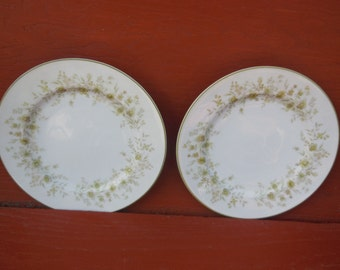 Sango China, Salad Plate,  Field Flowers About 1960s, Salad  Plates 8, Vintage Dishes, Vintage Kitchen, Prop,   :)S*