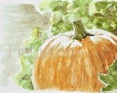 Pumpkin ACEO watercolor miniature art card ooak original garden vegetable