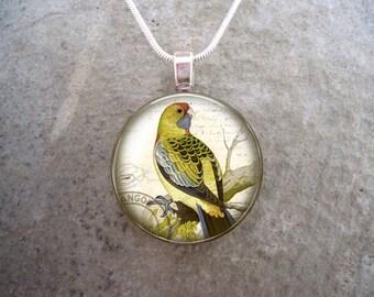 Bird Jewelry - Glass Pendant Necklace - Victorian Bird 6
