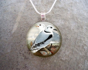 Bird Jewelry - Glass Pendant Necklace - Victorian Bird 44 - RETIRING 2017