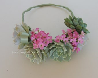 Succulent Crown
