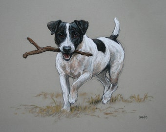 Jack Russell Terrier cute dog LE fine art print 'Sticks!' from an original soft pastel and charcoal sketch