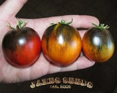 Kaleidoscopic Jewel Tomato Seeds - HEAVY PRODUCER