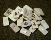 Rune Set. Bone runes. Bone and Silver Elder Futhark Runes