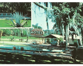 Postcard TALLAHASSEE FLORIDA Cactus Motel Retro Chrome Color  Post card