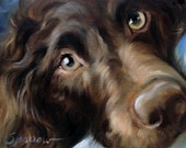 PRINT Boykin Spaniel Dog Face Art Print of oil Painting Gift / Mary Sparrow of Hanging the Moon