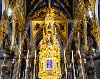 Basilica of the Sacred Heart - South Bend, IN