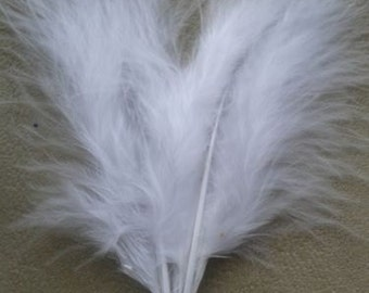 50 4inch Turkey Feathers White used in Native American Craft