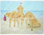 Golden Retriever Dog Cards Beach Bums