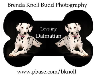 Dalmatian Dog Bone Ornament