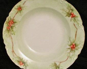 Limoges Porcelain Bowl / Artist Signed / Hand Painted