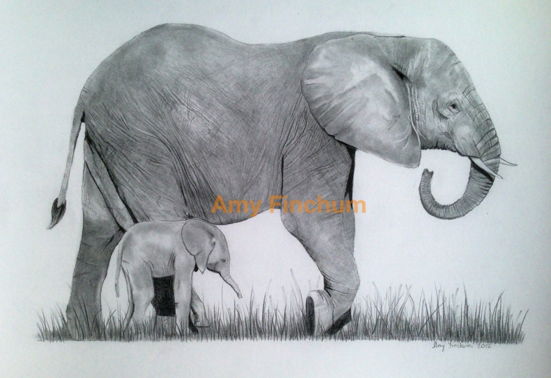 Elephant and Baby Prin...