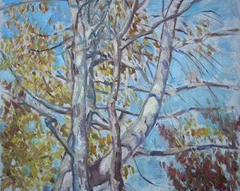 Original Landscape Oil Painting-Birches in October