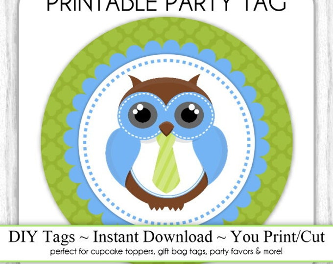 Blue and Green Owl Party Tags, Printable Party Tag, Cupcake Topper, DIY, You Print, You Cut, Instant Download