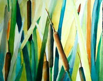 Cattails. Watercolor painting