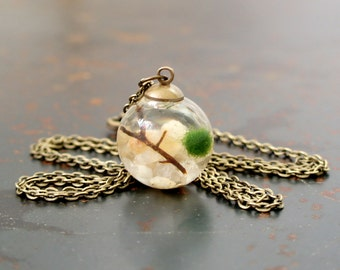 Live Marimo Moss Ball Terrarium Necklace