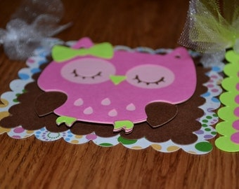 Owl Name Birthday Party Banner - Room Decor - Girls Birthday - Pink/Green