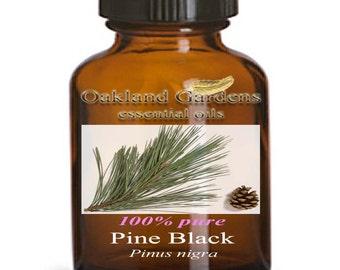 PINE Essential Oil - 100% PURE Therapeutic Grade Essential Oil - Pinus nigra