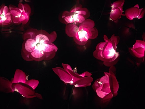 Purple String Lights For Bedroom : Fairy String Lights 35 Tiny Purple Orchids string by fairylighting