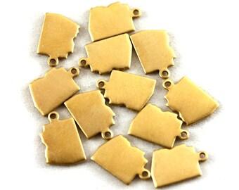6x Brass Blank Arizona State Charms - M073-AZ