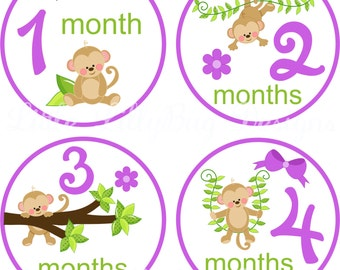 Monthly Baby Milestone Stickers Baby Girl Baby Shower One-Piece Baby Stickers Monthly Monkey Purple Green Baby Stickers Baby Month Sticker