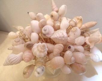 Wedding Toothpicks Beach Theme White Ivory Seashells Picks Sea Shell Shower Summer Party Planning Summer Luau Skewers Appetizers Christmas