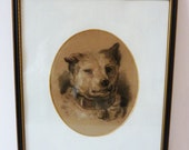 English School. Humorous Pencil Study of a Dog, Framed.