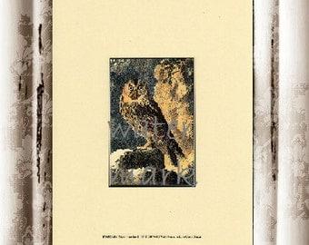 Art Print Owl 1 Vintage